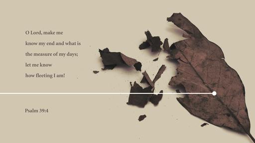 Psalm 394 [widescreen]