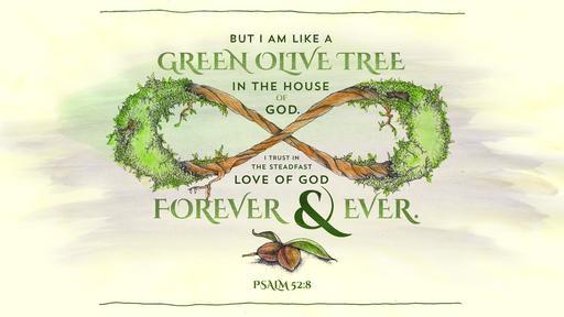 Psalm 528 [widescreen]