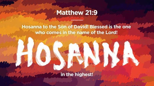 Matthew 219 [widescreen]
