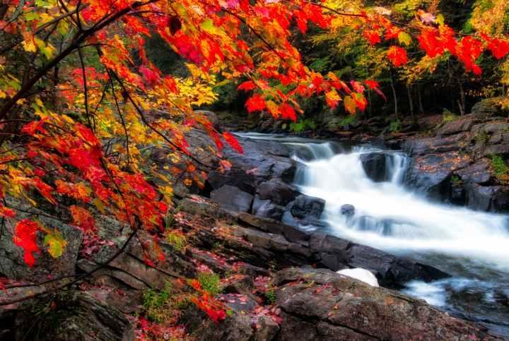 photo of waterfalls during fall season